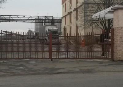 Chernomorsko Zlato